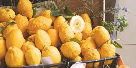 Zitronen filetieren für eine optimale Verwendung in der Küche