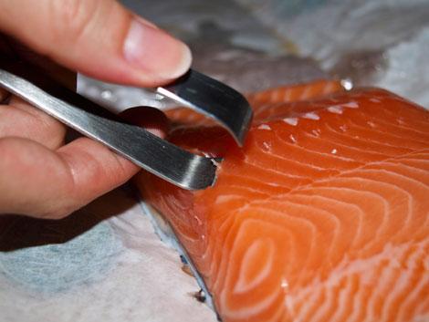 Fisch entgräten mit der Grätenzange