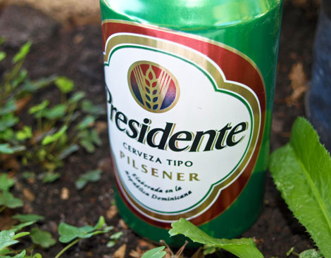 presidente-bier