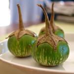 thai-auberginen4