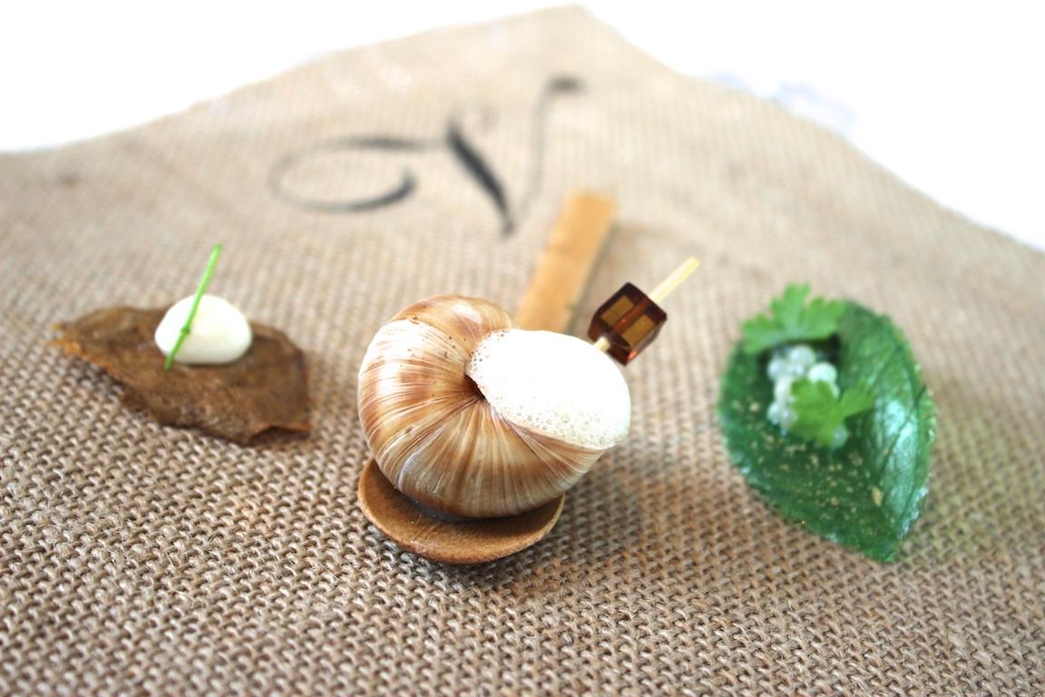 Gourmet-Tapas der Sterneküche - Kreativ und Lecker