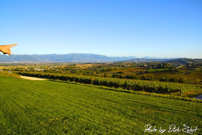 Tenuta Castelbuono und der Blick auf die Weinberge