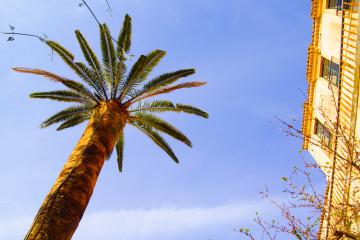 Lipari - Tagesausflug in eine malerische Welt