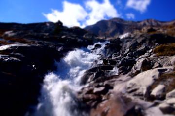Monte-Moro-Pass Wanderung - Auch Schafe gibt es unten noch