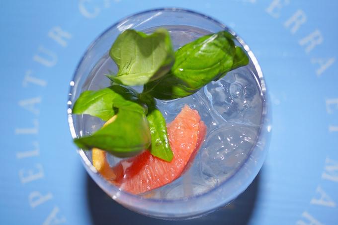 Gin Basil Cocktail