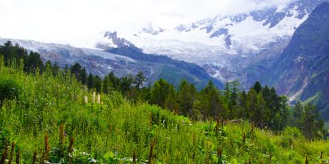 Beeindruckende Landschaften im Wallis