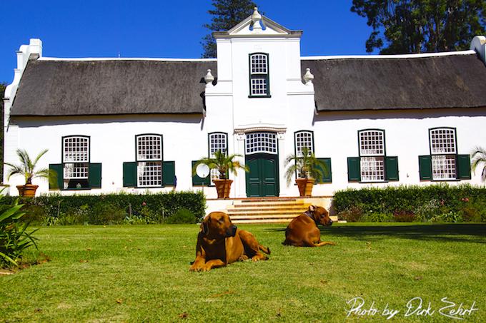 Buitenverwachting Weingut Südafrika