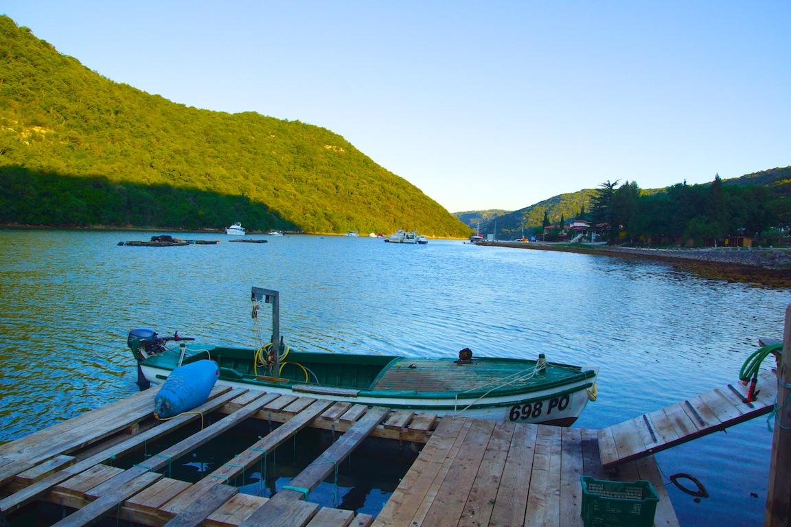 Der Lim Fjord - Ein perfektes Mikroklima für Austern