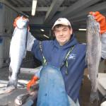 Bis zu 8 Kilogramm können die kapitalen Lachse erreichen