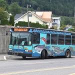Busse verziert mit Lachsen in Ketchikan