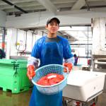 Ein Korb voller Lachsrogen - Alaska Lachs eine wertvolle Delikatesse