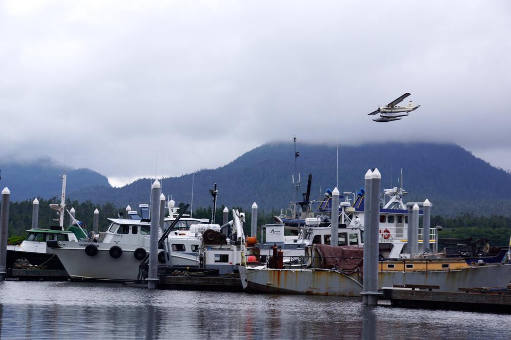 Hafen für Lachsfischer - Kodiak Island - Am besten mit dem Wasserflugzeug zu erreichen