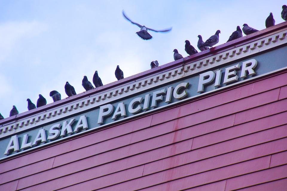 Juneau  - Alaska Pacific Pier