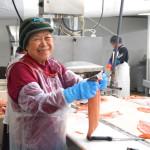 Lachse Filetieren ist Frauenarbeit die viel Geduld erfordert