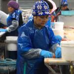 Von älteren Mitarbeitern werden hier die Gräten in Kleinstarbeit entfernt
