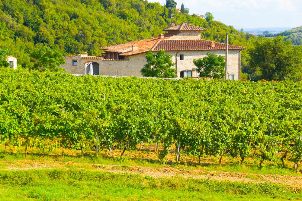 Ferienvilla in der Toskana - Mit Weinbergen und Olivenhainen ein Erlebnis