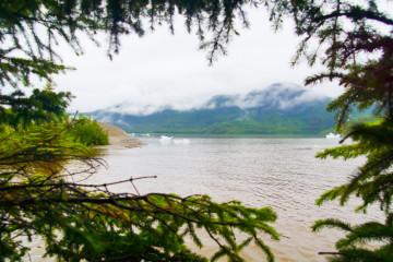 Die Wildnis Alaskas - Hat Kulinarisch einiges zu bieten