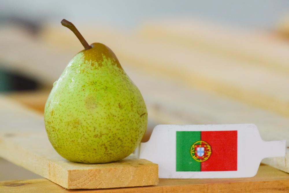Pêra Rocha Birnen aus Portugal