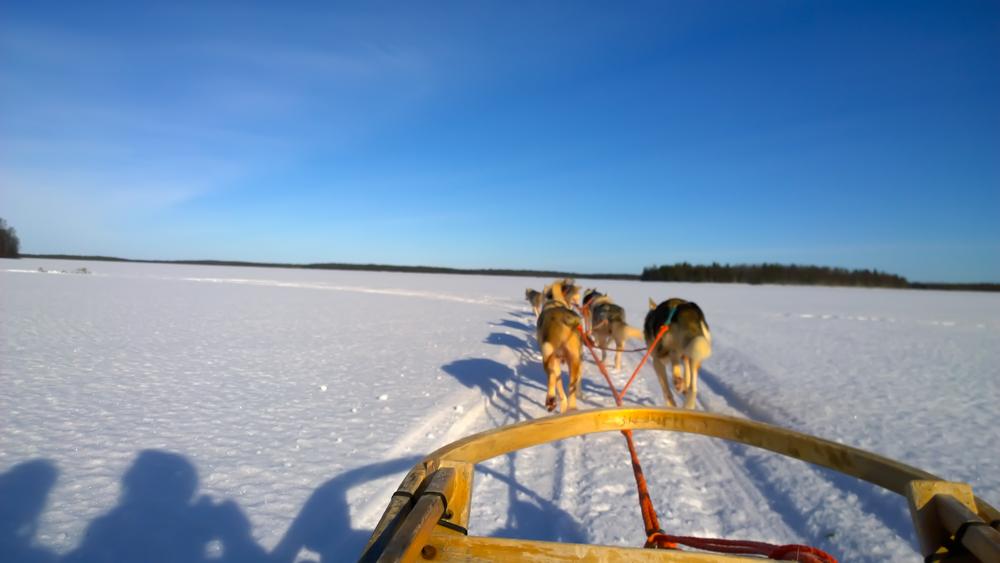 Schnee im Winter - Bei Sonne ist eine Schlittenfahrt sehr fein