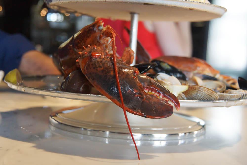Brasserie Adriatic - Hummer frisch und lecker