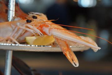 Brasserie Adriatic - Langustinen