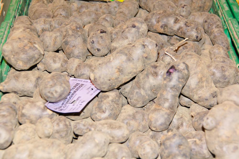 Marché de Talensac in Nantes - Die Vitelotte - eine tolle Kartoffelsorte in lila