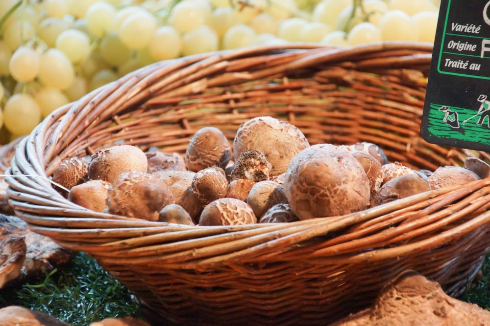 Marché de Talensac in Nantes - Pilze jeder Art
