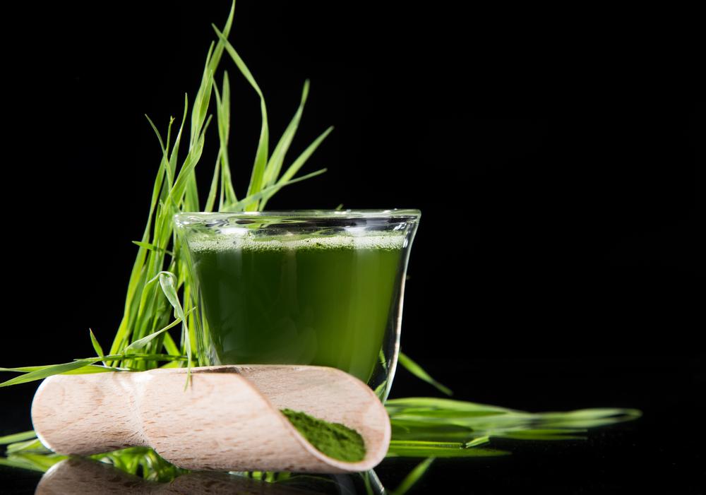 Gerstengrassaft - Gerstengraspulver