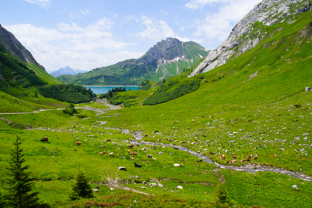 Arlberger Land - perfekt zm Wandern