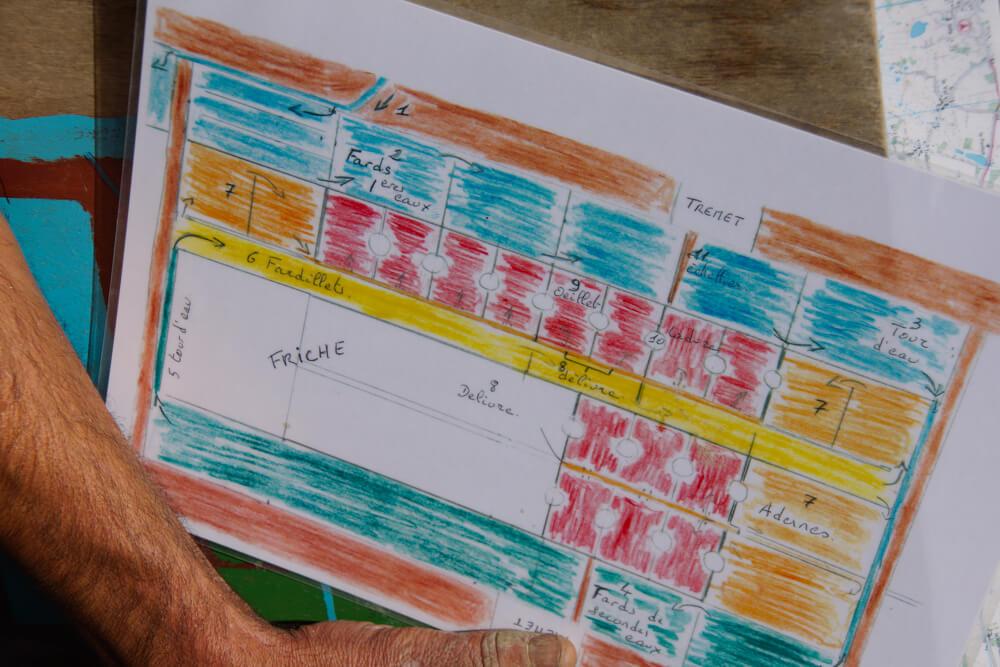 Fleur de Sel de Guérande - Anordnung der Salzbecken