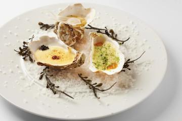 Gourmet-Austern