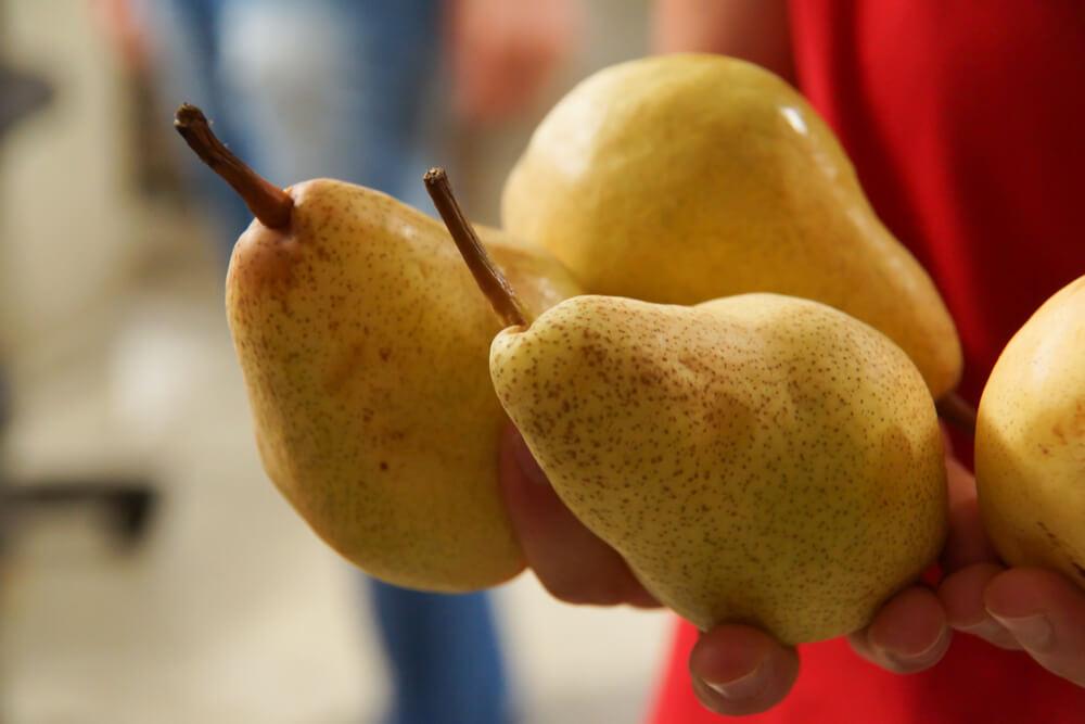 Frische Birnen bester Qualität