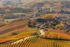 Das Piemont - Eine Region für Genießer