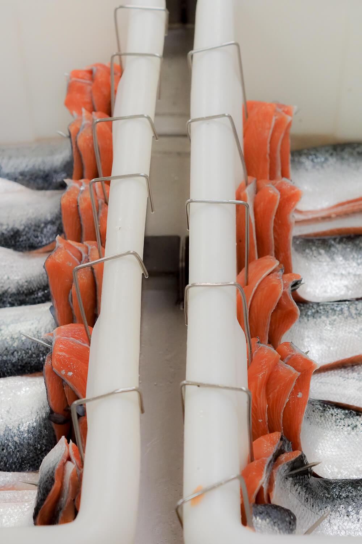FRIEDRICHS Feinfisch Manufaktur - Handarbeit wohin man sieht