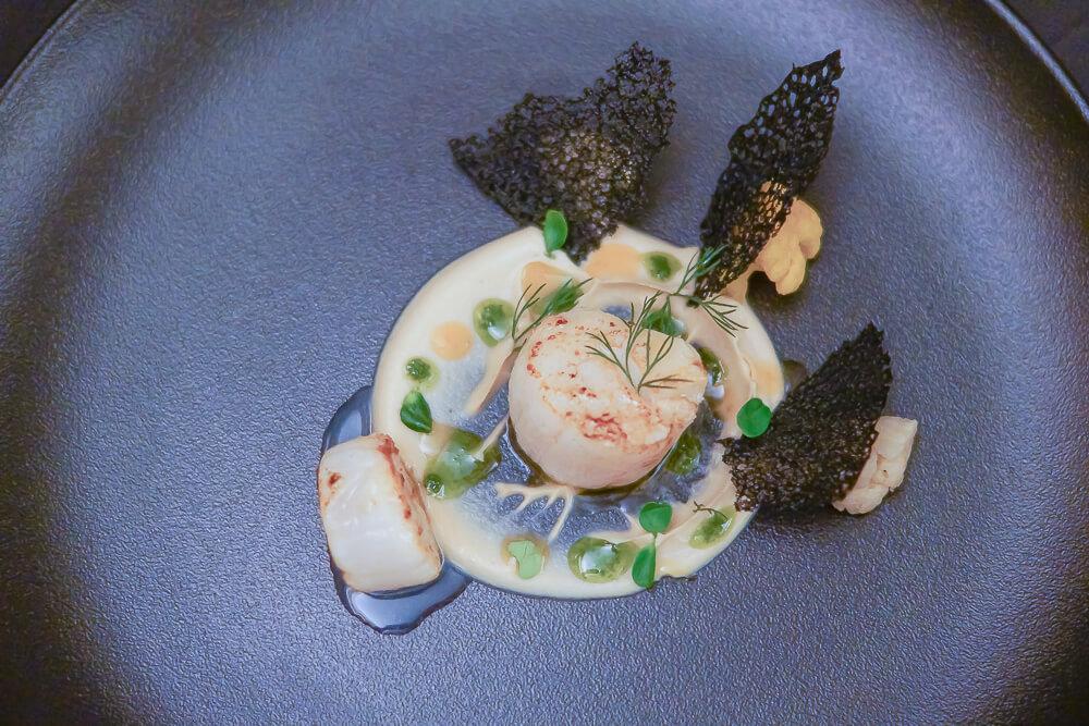 Jakobsmuscheln auf Blumenkohlpüree, Zitrusjus und Sepia Korallenchip