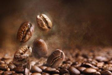Die aromatische Kaffeebohne