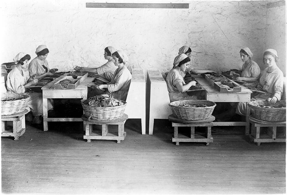 Historisches Bild Zigarrenrollerinnen