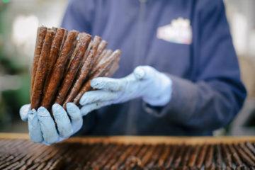 Zigarren in der Herstellungsphase