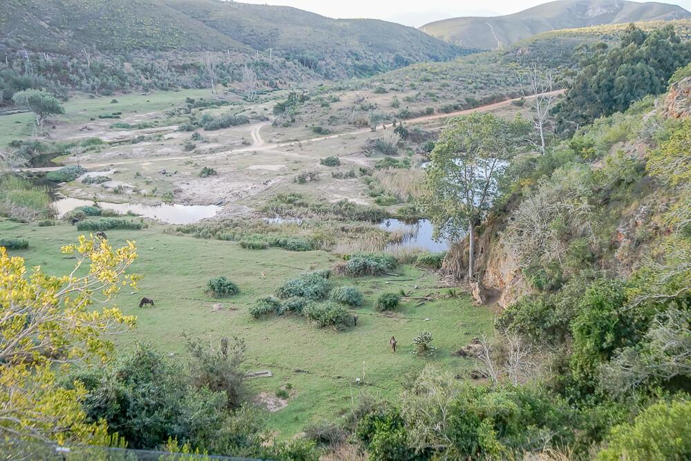 Botlierskop Game Reserve & Villas - Ausblick auf die Game Reserve