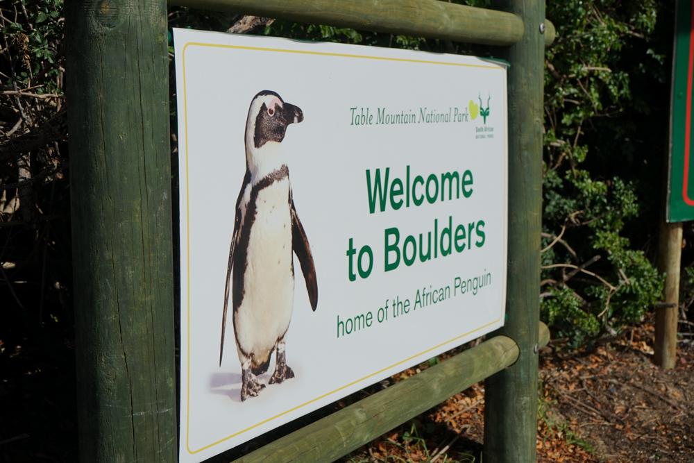 Boulders Beach Pinguine - Eingang