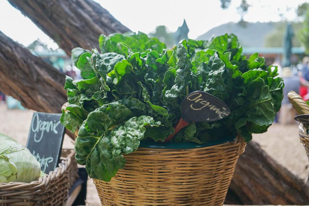 Wild Oats Community Farmers' Market - frisches Farmgemüse