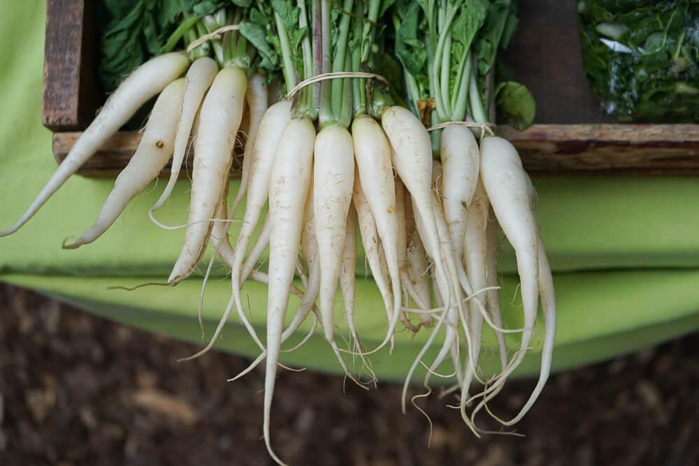 Wild Oats Community Farmers' Market - organisches Gemüse