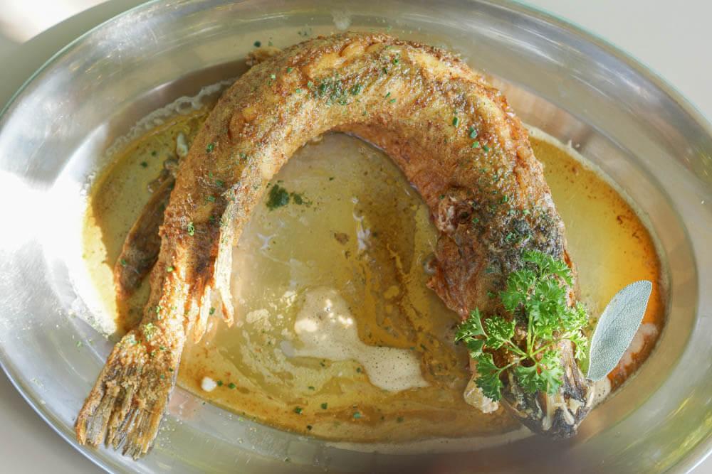 Grandioser Hecht vom Murtensee in Buttersoße zubereitet