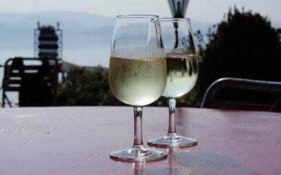 Vully Weißwein genießen bei Traumwetter