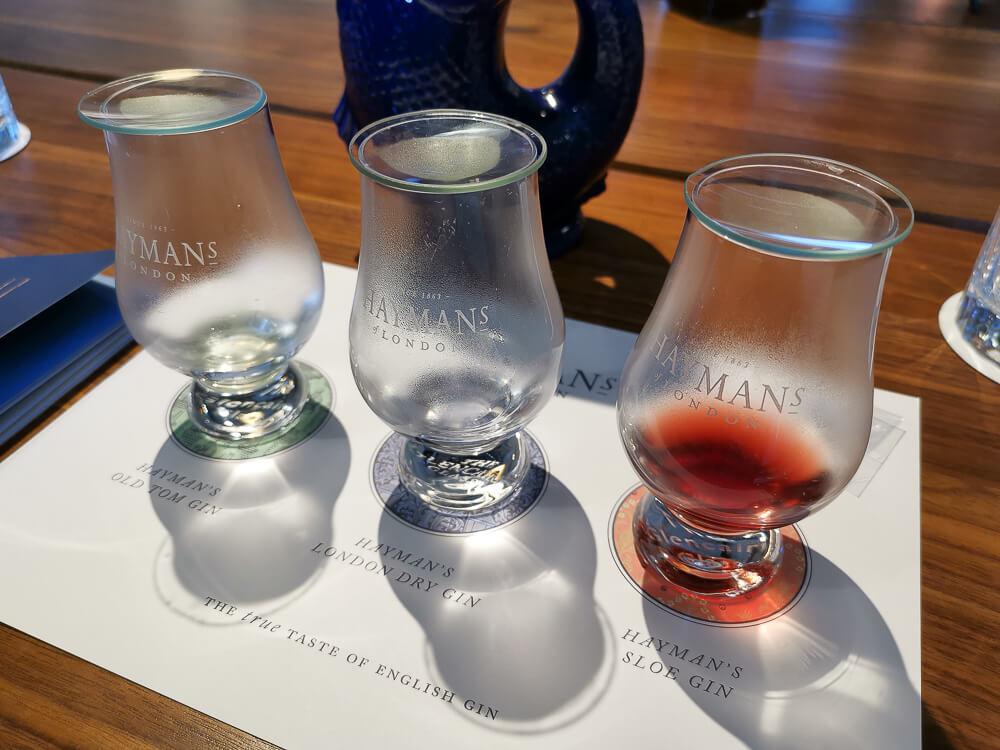 Haymans Gin - Gintasting Set