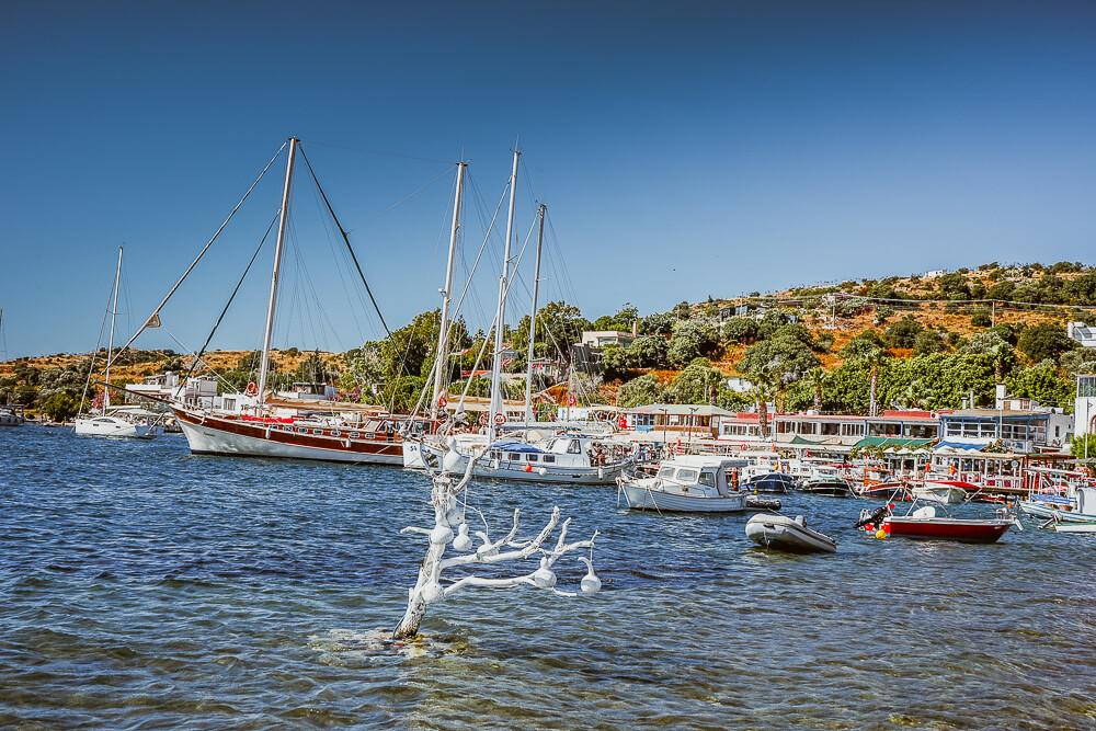 SCIC Sailing - Manchmal im Hafen, oft auf See
