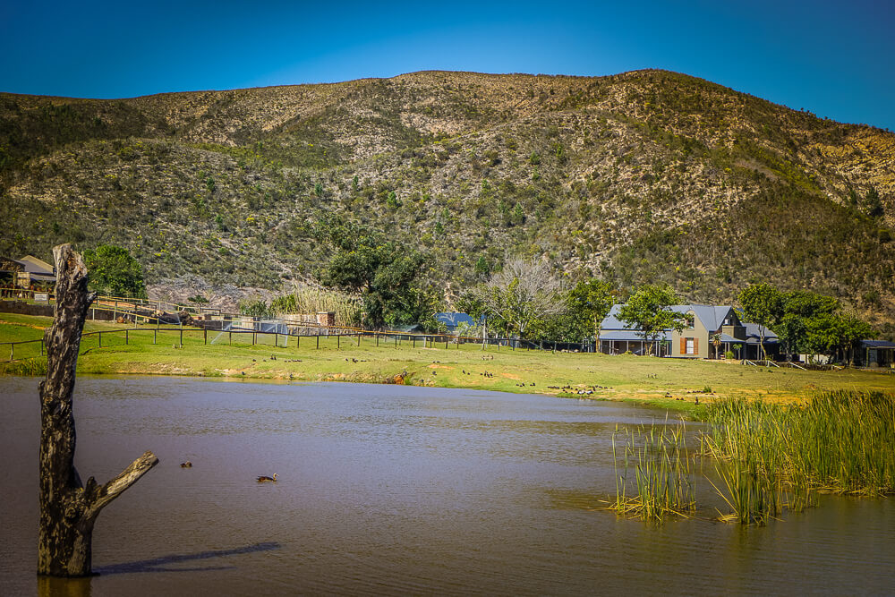 Botlierskop Private Game Reserve - Park