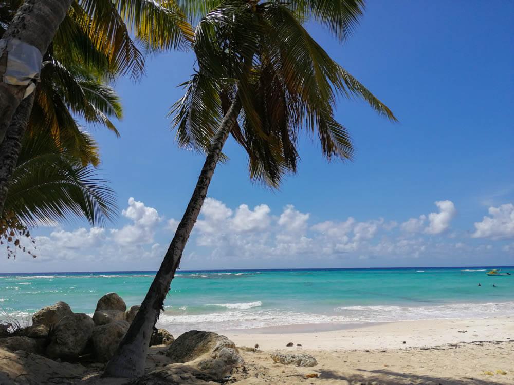 Die Inseln der Karibik erkunden auf Kreuzfahrt