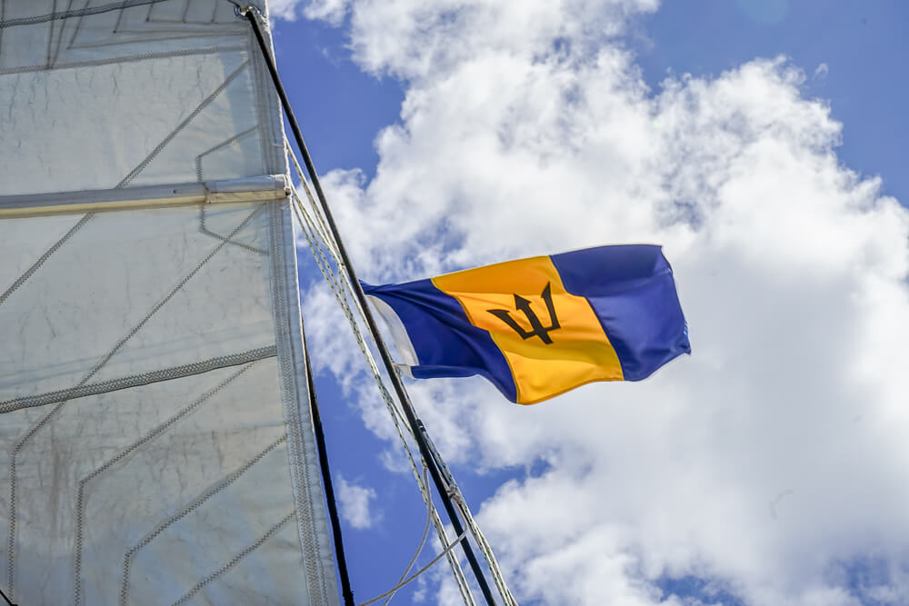 Cool Runnings, Barbados -Barbados Flagge