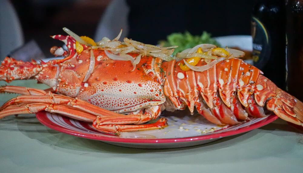 Food & Rum Festival Barbados - stattliche Hummer vom Grill